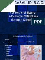 10.- Cambios Fisiologicos en La Gestacion - Endocrinológicos