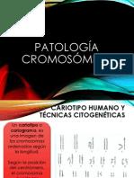 Patologías cromosomicas