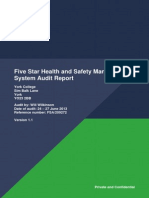 Five Star Health and Safety Management System Audit Report[1]