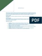 Misión, Visión, Valores y Estructura Del SG-SST Arcor de Perú S.A