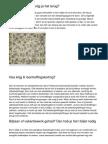 Belasting Terugvragen Zo Werkt Het.20140907.090120