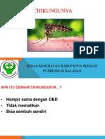 Demam Berdarah Chikungunya Penyuluhan Untuk Kader Dan Masyarakat