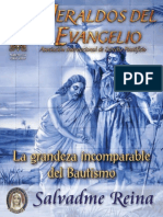 RHE072_ES - RAE091_200907.pdf