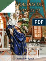 RHE100_ES - RAE119_201111.pdf