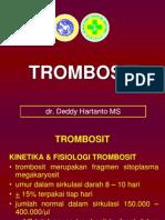 New Trombosit