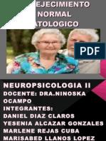 Envejecimiento Normal - Patologico ( Neuropsicologia II )