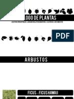 Catalogo Plantas Ep