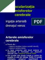 123490740-vascularizatia-encefalului