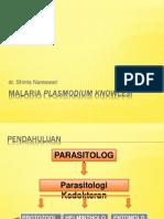 Malaria Plasmodium Knowlesi
