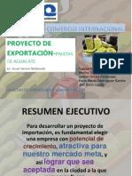 Proyecto de Exportacion Paletas de Aguacate