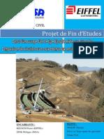 Rapport Pfe Wolff