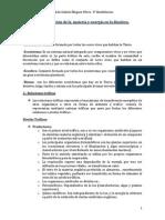 Tema 4 y 5.docx