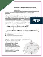 SEMINARIO4BIOCA.docx