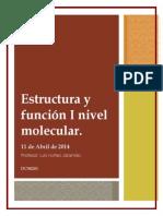 Trabajo Final Molecular