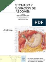 Estomago y Exploracion de Abdomen