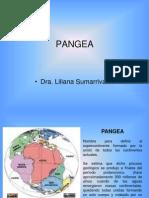 6 Litosfera Pangea