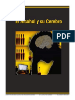 El Alcohol y Su Cerebro