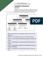 Algoritmos y Protocolos_11690143