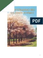 Cartilha USP - Procurando Irá, Geusa Simone de Freitas