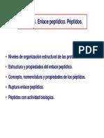 Tema 3b- Enlace Peptidico Estructura 1a Farmacia