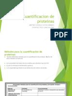 Cuantificacion de Proteinas Bestiarag