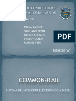 cammonrail-091130141448-phpapp01