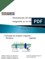 Dl Efecto Sinergista y Antagonista_farma