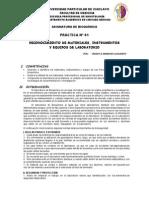 Práctica Nº 01-Bioseguridad y Reconocimiento Mate.lab.