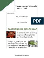 Taller Introduccion a La Gastronomia Molecular