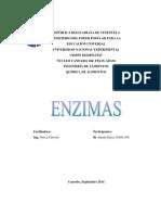 Monografia de Enzimas