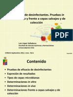 Luis Lopez Valladares - Desinfectantes