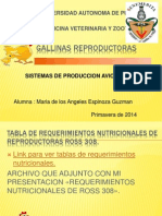 2da Exposicion de Aves Reproductoras