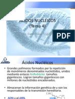 4 Acidos Nucléicos