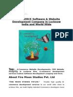 E-Commerce Website Development Company in Delhi Lucknow India, USA | Fire Moon Studios