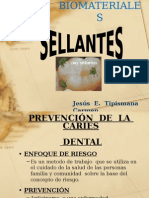sellantes biomateriales