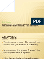 Surgical Anatomy of the Stomach