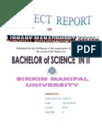 Project Report NILU