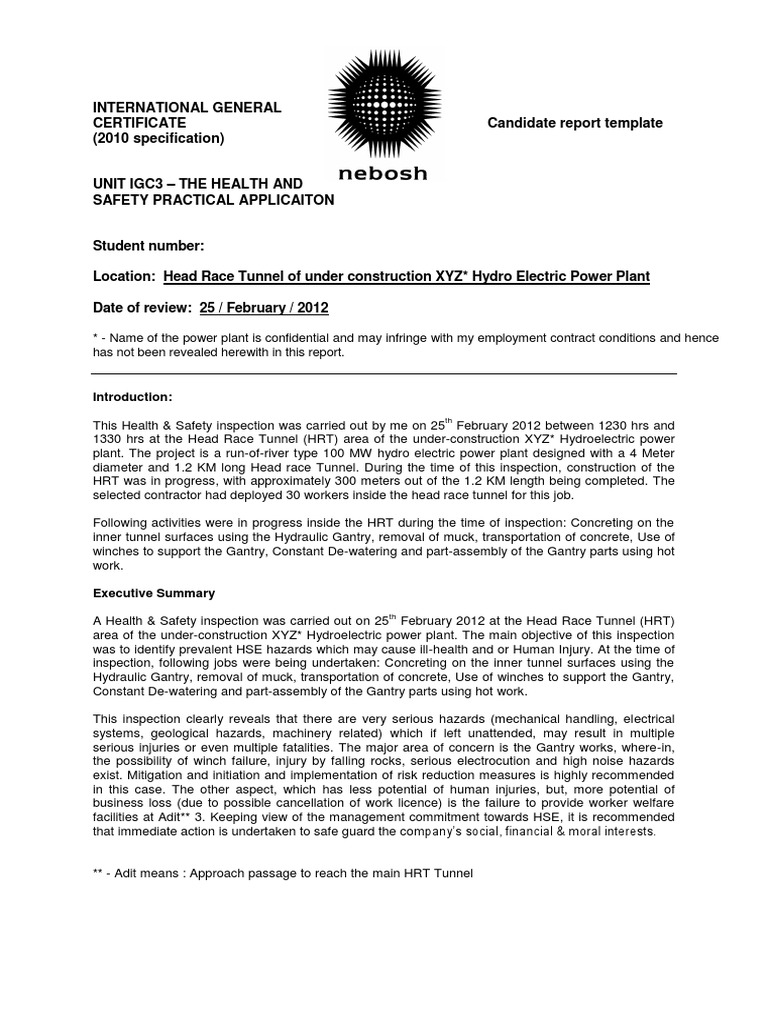 health and safety review template - igc 3 management report igc 3 sample