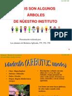 Presentar Boles 0405