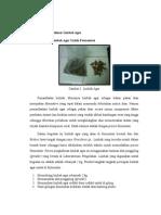 Degradasi Polimer Limbah Agar