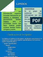 LIPIDOS2010