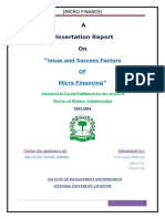 Issue and Success Factors in Micro Financing Copy