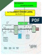 55404222 Esquema Procedimiento Ordinario Laboral