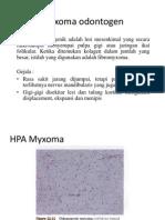 Myxoma odontogen