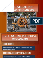 enfermedadporpolvodecaamo-110509205041-phpapp02