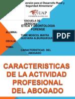 Diapositivas Caracteristicas Del Abogado