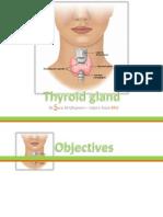 Anatomyofthyroidgland 2 140129144245 Phpapp02
