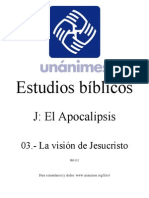 J.03.- La Vision de Jesucristo