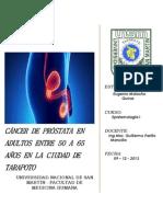 Protocolo de Investigacion - Cáncer de Próstata