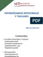 ESPOROZOARIOS INTESTINALES Y TISULARES.pptx
